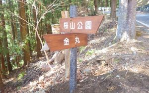 藤岡市 桜山公園